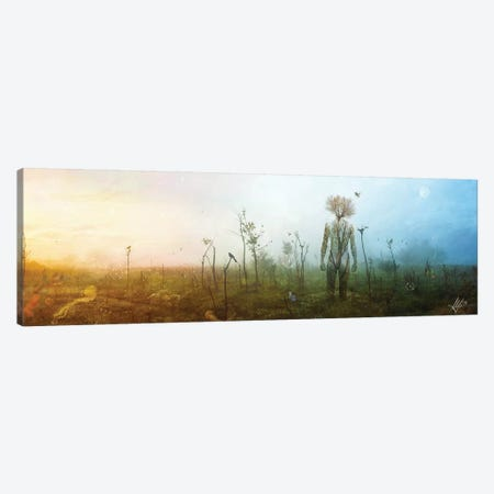 Internal Landscapes Canvas Print #MSN54} by Mario Sanchez Nevado Art Print