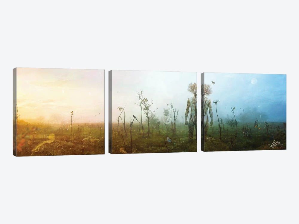 Internal Landscapes by Mario Sanchez Nevado 3-piece Art Print