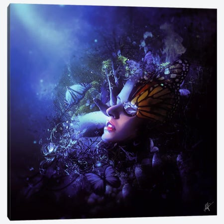 Last Travel Of The Butterflies Canvas Print #MSN59} by Mario Sanchez Nevado Canvas Artwork