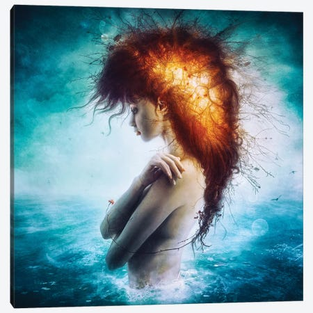 Nirvana Canvas Print #MSN63} by Mario Sanchez Nevado Canvas Print