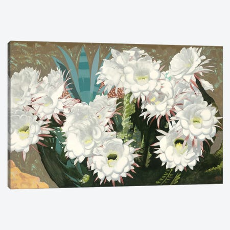 Giant Argentine Cactus Canvas Print #MSV10} by M & E Stoyanov Fine Art Studio Canvas Wall Art