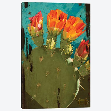 Cactus Blooms Canvas Print #MSV11} by M & E Stoyanov Fine Art Studio Canvas Art