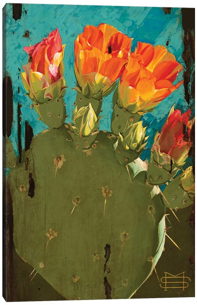 Cactus Blooms Canvas Art Print