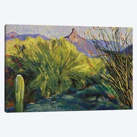 Picacho Peak, Arizona Canvas Print #MSV14} by M & E Stoyanov Fine Art Studio Canvas Art Print