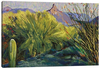 Picacho Peak, Arizona Canvas Art Print
