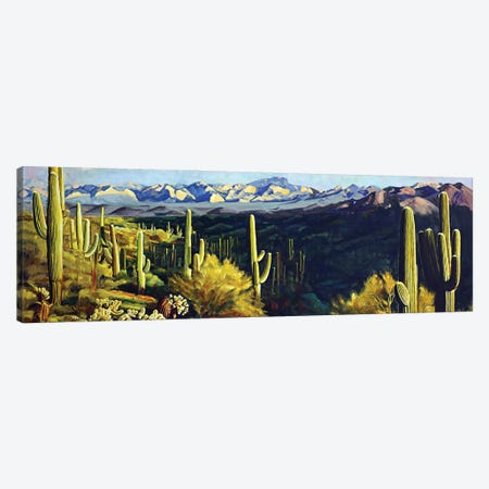 Sonoran Desert Canvas Print #MSV16} by M & E Stoyanov Fine Art Studio Canvas Print