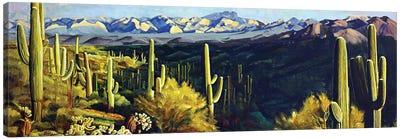 Sonoran Desert Canvas Art Print