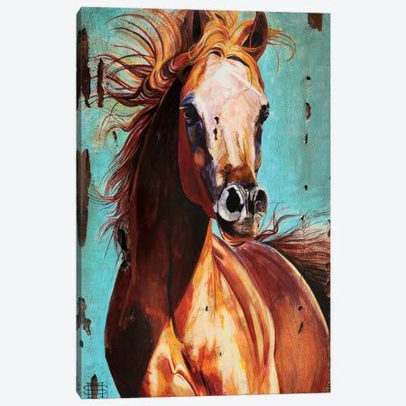 Champion Canvas Print #MSV21} by M & E Stoyanov Fine Art Studio Canvas Art Print