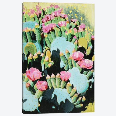 Prickly Pear Blooms Canvas Print #MSV31} by M & E Stoyanov Fine Art Studio Canvas Artwork