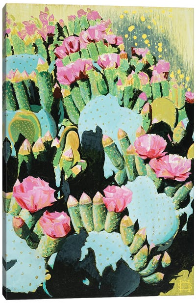 Prickly Pear Blooms Canvas Art Print