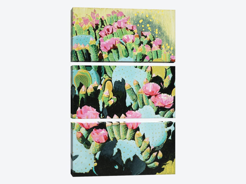 Prickly Pear Blooms by M & E Stoyanov Fine Art Studio 3-piece Canvas Wall Art