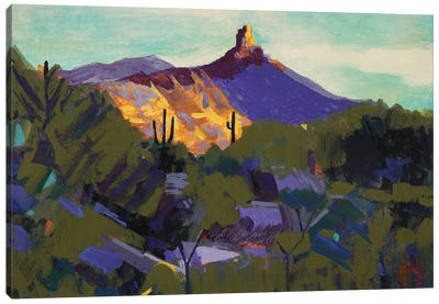 Pinnacle Peak, Az Canvas Art Print