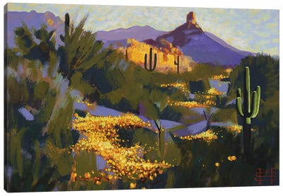 Pinnacle Peak In Spring Canvas Art Print