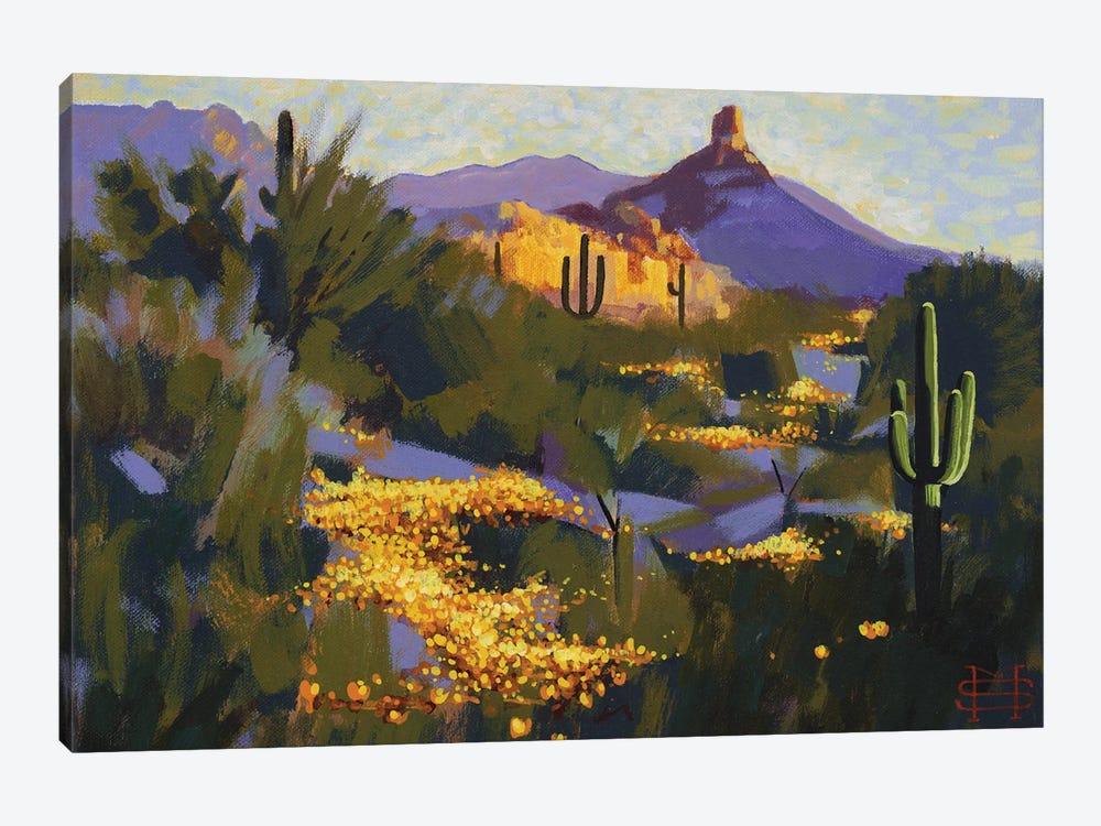 Pinnacle Peak In Spring by M & E Stoyanov Fine Art Studio 1-piece Canvas Wall Art