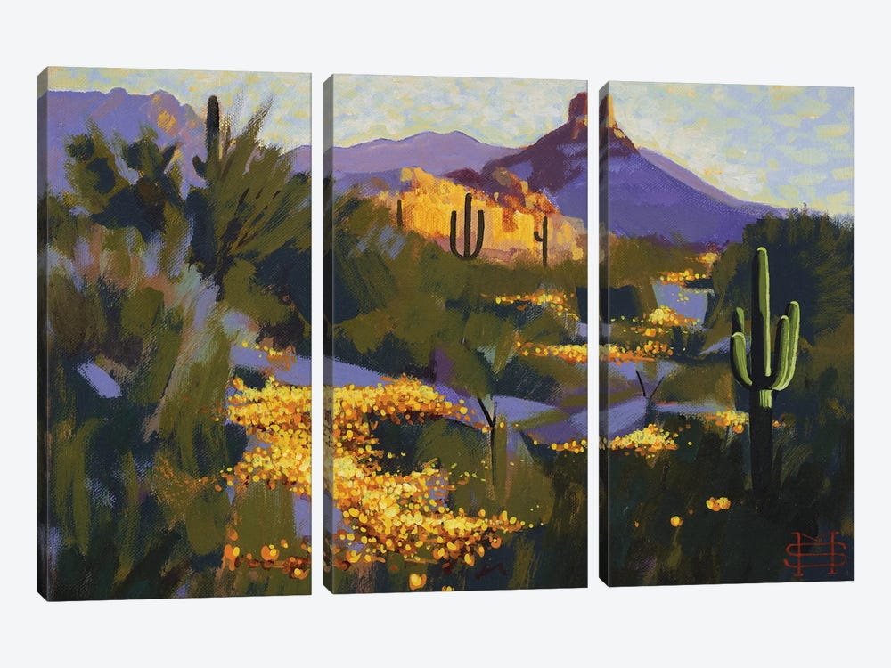 Pinnacle Peak In Spring by M & E Stoyanov Fine Art Studio 3-piece Canvas Wall Art