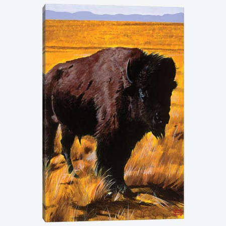 Buffalo Land Canvas Print #MSV3} by M & E Stoyanov Fine Art Studio Canvas Wall Art