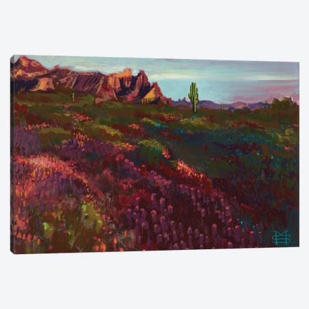 Springtime In Arizona (Eagle Tail Mountain) Canvas Print #MSV49} by M & E Stoyanov Fine Art Studio Art Print