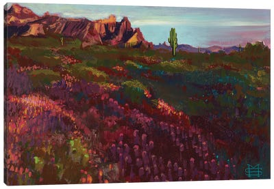 Springtime In Arizona (Eagle Tail Mountain) Canvas Art Print