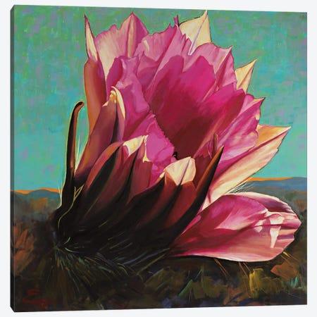 Desert Bloom Canvas Print #MSV58} by M & E Stoyanov Fine Art Studio Canvas Wall Art
