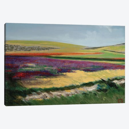 Poppy Lavender Fields Canvas Print #MSV61} by M & E Stoyanov Fine Art Studio Canvas Print