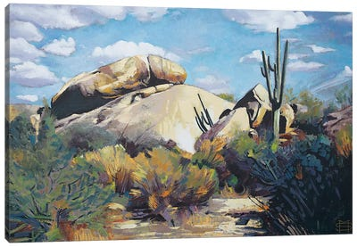 The Boulders Canvas Art Print