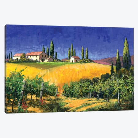 Tuscan Evening Canvas Print #MSW2} by Michael Swanson Art Print