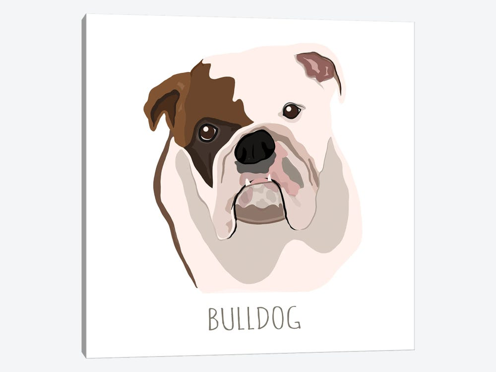 Bull Dog by Melanie Torres 1-piece Canvas Wall Art