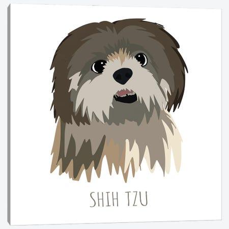 Shih Tzu Canvas Print #MTE2} by Melanie Torres Art Print