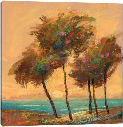 Palms Setting Sun Canvas Art Print