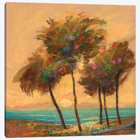 Palms Setting Sun Canvas Print #MTH141} by Michael Tienhaara Art Print