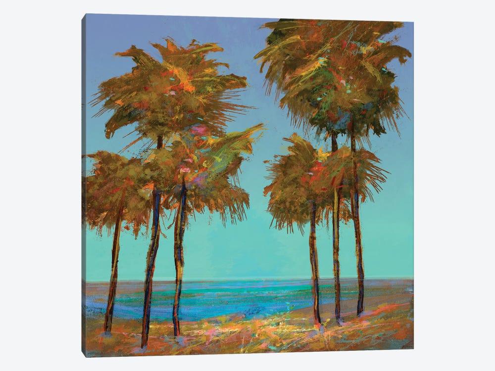 Seaside Sunset by Michael Tienhaara 1-piece Canvas Art