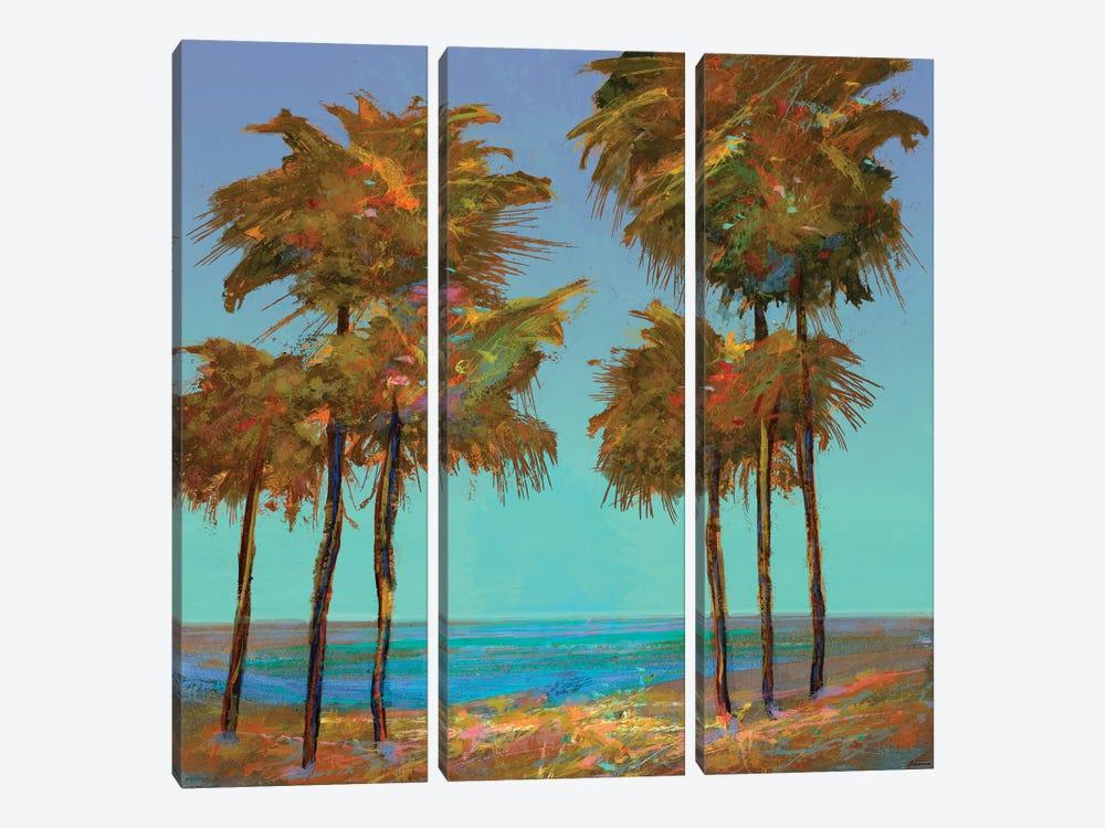 Seaside Sunset by Michael Tienhaara 3-piece Canvas Wall Art