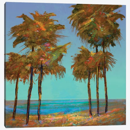 Seaside Sunset Canvas Print #MTH142} by Michael Tienhaara Canvas Print