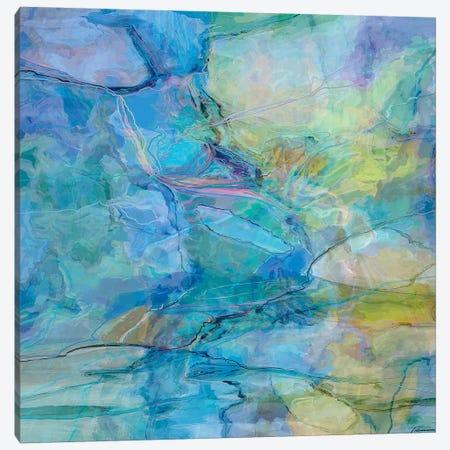 Random IV Canvas Print #MTH153} by Michael Tienhaara Canvas Art