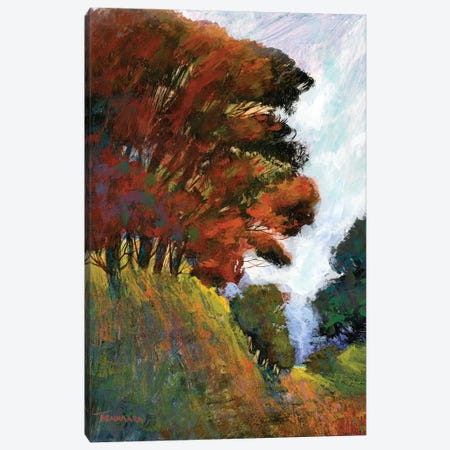 Fall's Romance III Canvas Print #MTH23} by Michael Tienhaara Canvas Art