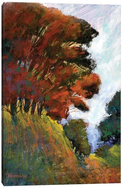 Fall's Romance III Canvas Art Print