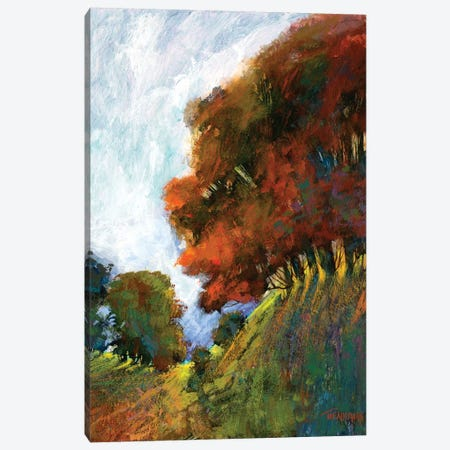 Fall's Romance IV Canvas Print #MTH24} by Michael Tienhaara Canvas Print
