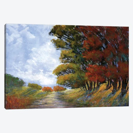Golden Fall Canvas Print #MTH29} by Michael Tienhaara Canvas Wall Art