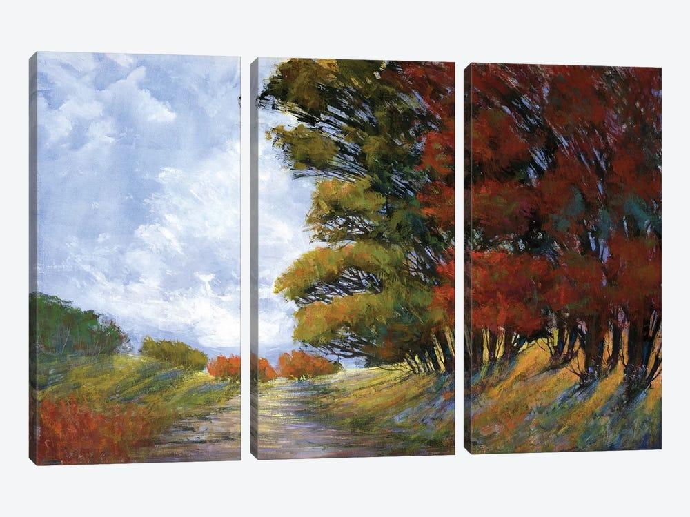 Golden Fall by Michael Tienhaara 3-piece Canvas Art Print
