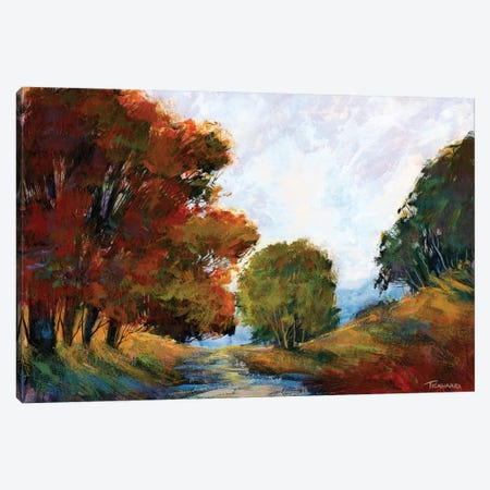 Nature's Gestures II Canvas Print #MTH38} by Michael Tienhaara Canvas Print