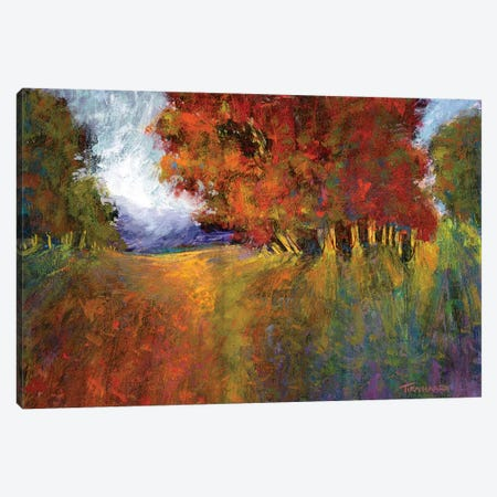 Aura Of Fall I Canvas Print #MTH4} by Michael Tienhaara Canvas Art Print