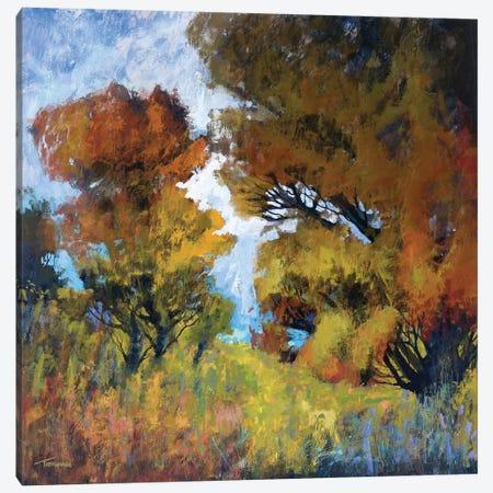 September Surprise I Canvas Print #MTH51} by Michael Tienhaara Art Print