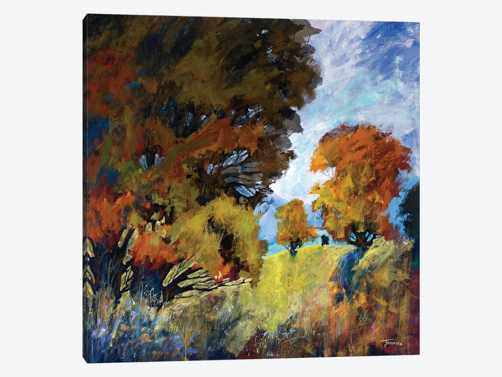 September Surprise II by Michael Tienhaara 1-piece Canvas Art Print