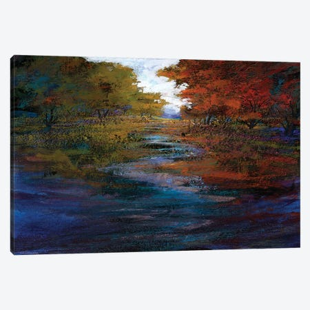 Serene Journey I Canvas Print #MTH53} by Michael Tienhaara Art Print