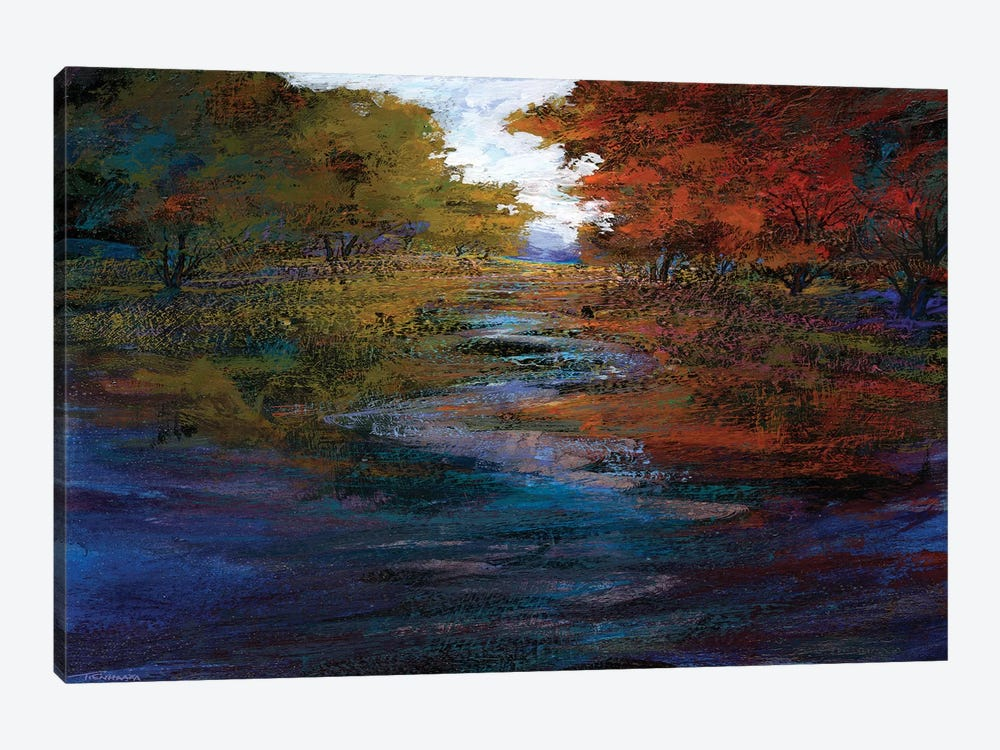 Serene Journey I by Michael Tienhaara 1-piece Canvas Wall Art