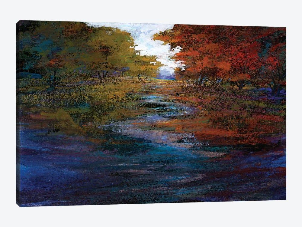 Serene Journey I by Michael Tienhaara 1-piece Canvas Wall Art