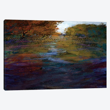Serene Journey II Canvas Print #MTH54} by Michael Tienhaara Canvas Art
