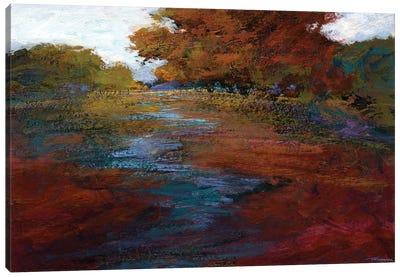 Serene Journey III Canvas Art Print