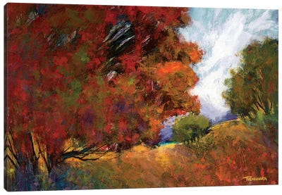 Aura Of Fall II Canvas Art Print