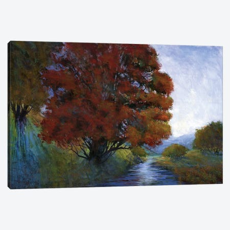Summer Brook Canvas Print #MTH63} by Michael Tienhaara Canvas Wall Art